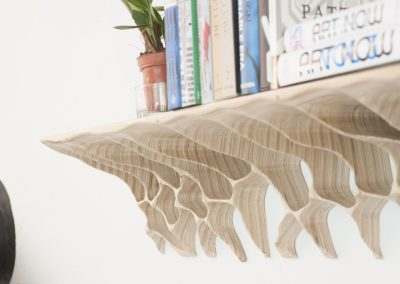 Erosion Shelf_CyrylZ Design